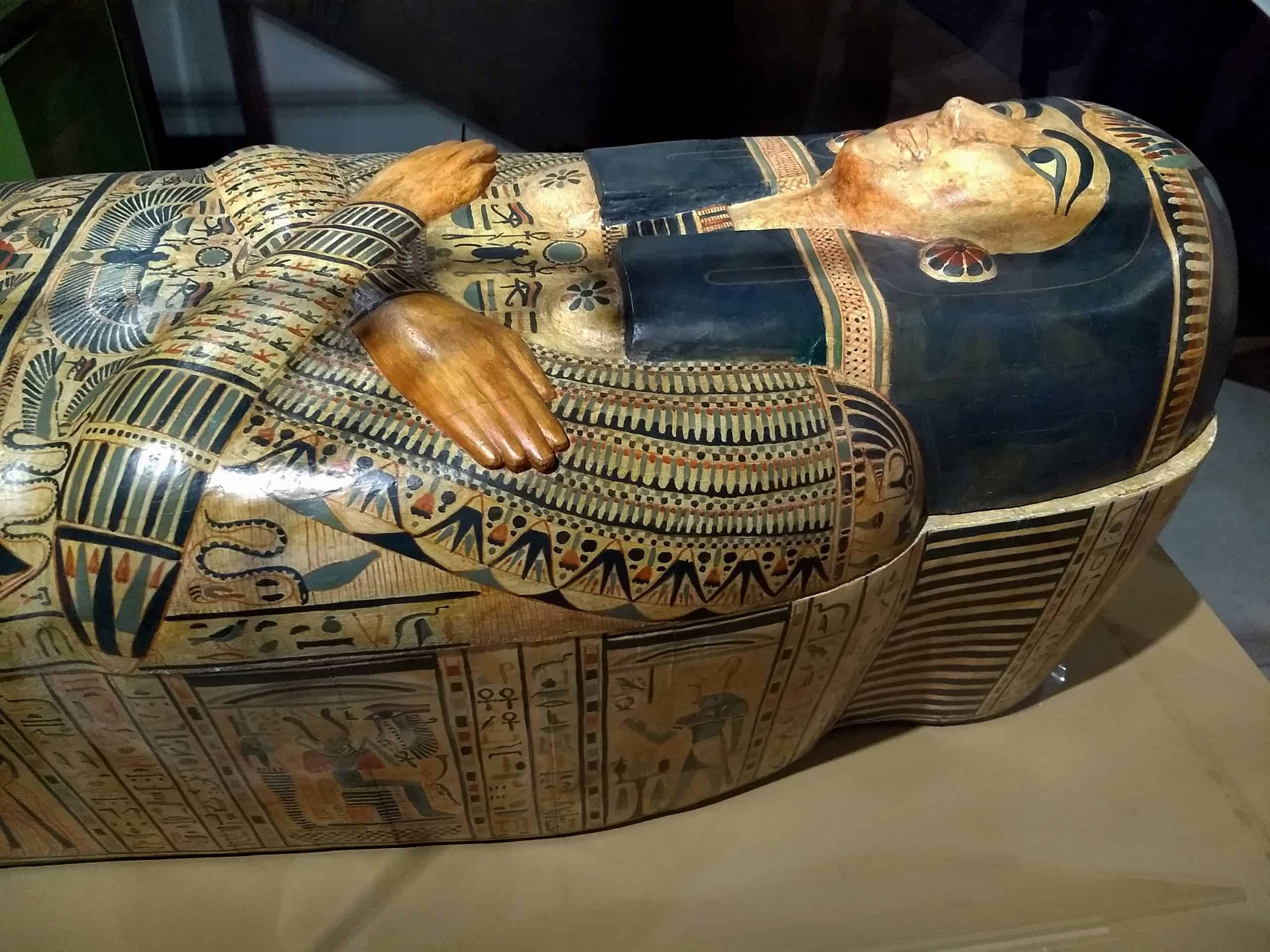 egyptology college major