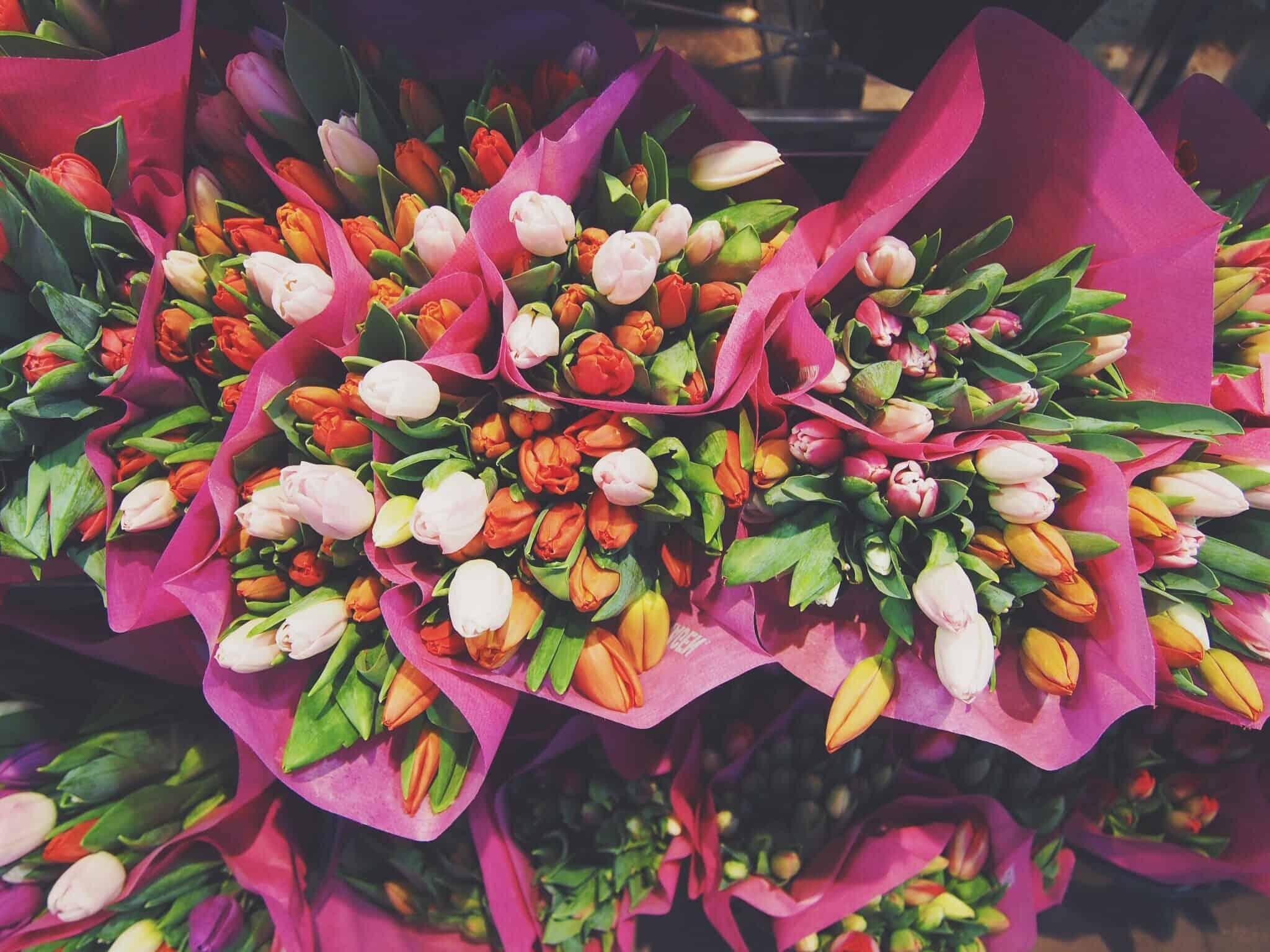 floral management college major