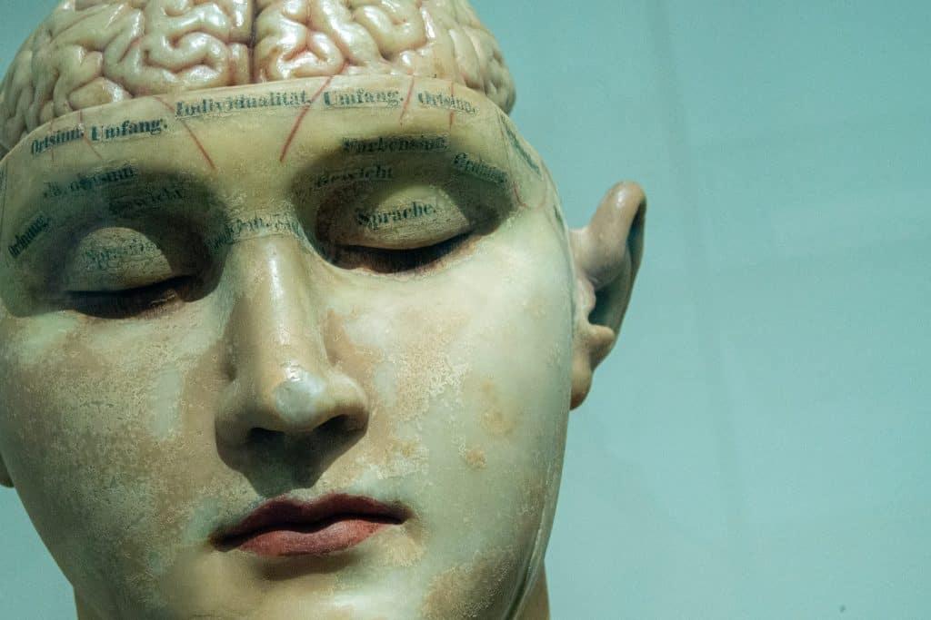 neuroscience college major